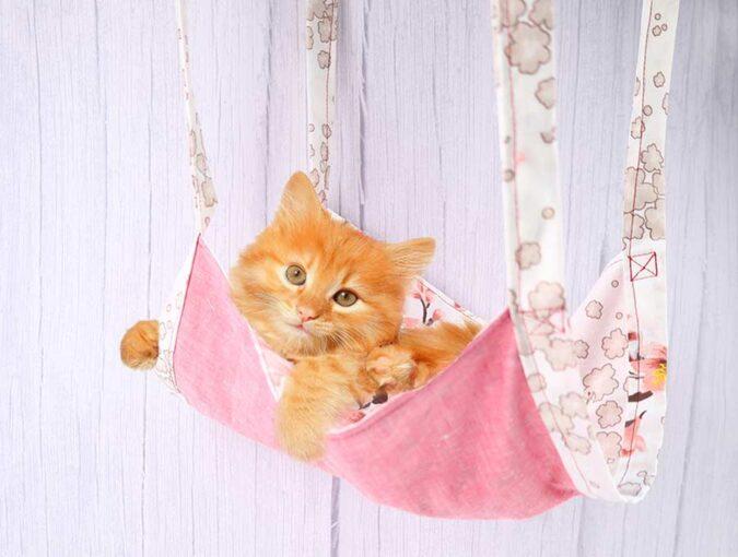 diy cat hammock with kitty inside